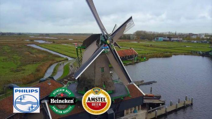 Gollandskie-cvety-gollandskij-syr-Jekonomika-Niderlandov