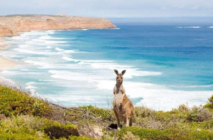 Переезд в Австралию на ПМЖ